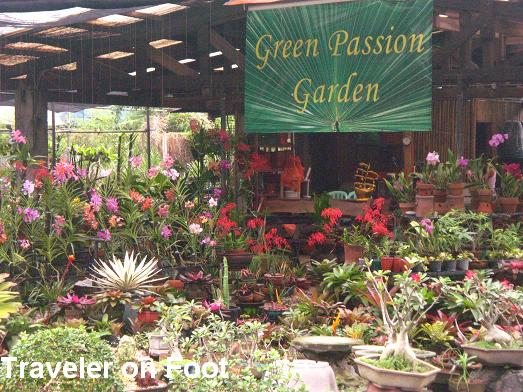 ... The Manila Seedling Bank Compound Aside From The Affordable Plants And  Gardening Supplies Are The Garden Themes. A Walk Around The Garden Stores  Is Like ...