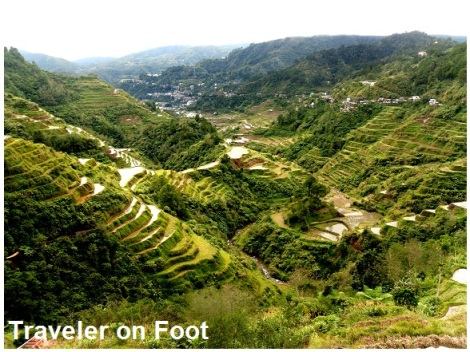 Banaue Rice Terraces Traveler on foot